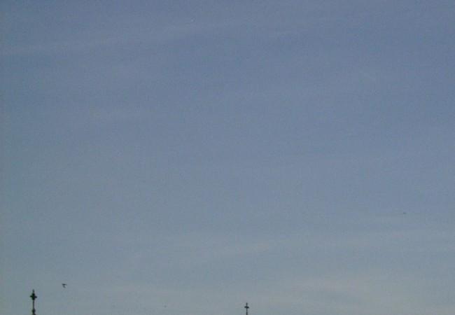"""19:25  Gracias a Ignacio, sabemos que otro año han llegado a Madrid los pájaros que duermen en el aire, y en el aire los fotografió este viernes sobre la torre y la cúpula que se ven en """"leer más""""."""