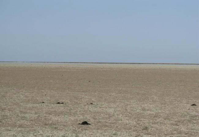 En verano, la marisma, seca y resquebrajada, permite el paso del vehículo sin ninguna dificultad, y luce como un espejo por efecto de la sal acumulada en el suelo, de ahí el nombre de lucios que reciben las manchas de agua entre las islas de juncos y