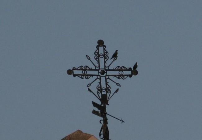 Los estorninos que ocupan los huecos de las numerosas iglesias, parecían forman parte de las cruces y veletas de los campanarios.                       Pilar López