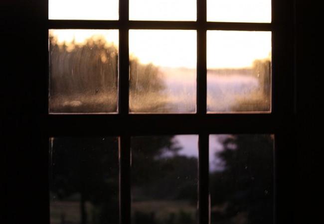 Por esta ventana, y a unos setenta metros de distancia, grabé ayer una escena curiosísima.