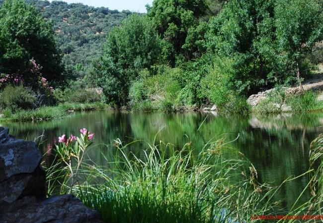 Por las tierras del río Sillo y Álamo