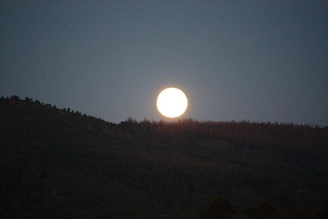 La imagen de la luna llena es la única que  EL ENGAÑAPASTORES, artículo recién escrito y editado en republica.es