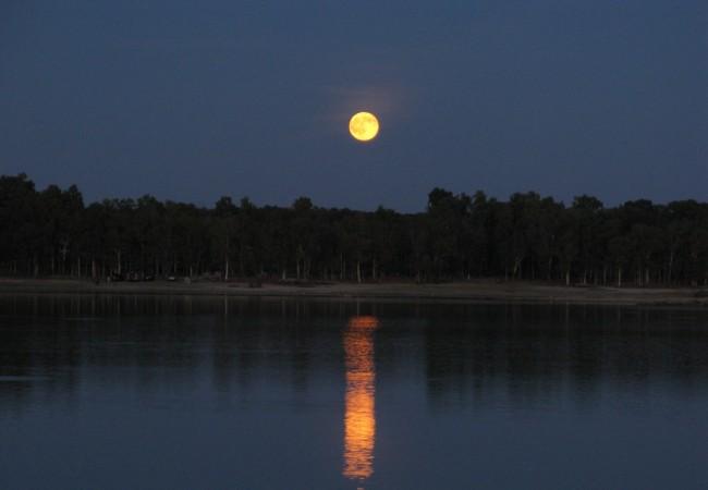 """Tienen estas noches tanta luz como la noche que se cerró en el Quijote, """"con tanta claridad de luna, que"""