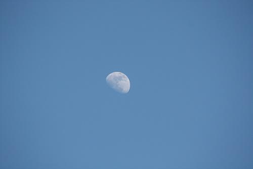 La luna, como un pétalo blanco, la tarde en la que la nació mi sobrina Celia, hoy 13 de Abril.   Mónica Fernández-Aceytuno