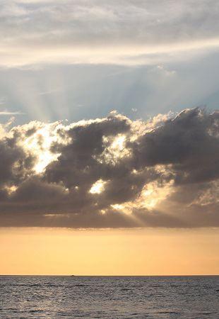 Se diría que el sol no quiere que le miremos, sino que observemos lo que, sobre el mundo, alumbra.  Mónica Fernández-Aceytuno