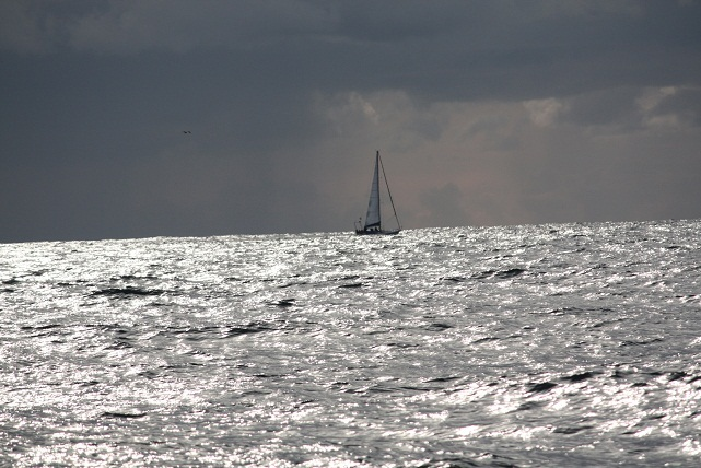 La belleza sobre el mar la ponen los veleros. The splendour coating the sea´s surface is provided by the sailboats. MF-A
