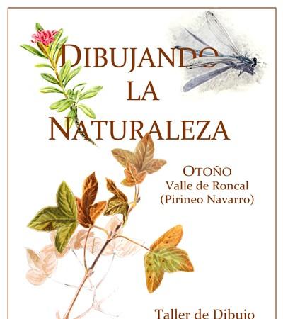 Otoño Valle de Roncal (Pirineo Navarro) Taller de Dibujo  19-21 de Octubre de 2012 Información: fhernandez@avestrazos