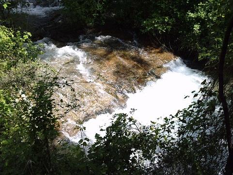 Ruta el bosque Benamahona (por el río Majaceite) en la sierra de Cádiz.  Guillermo Fajardo