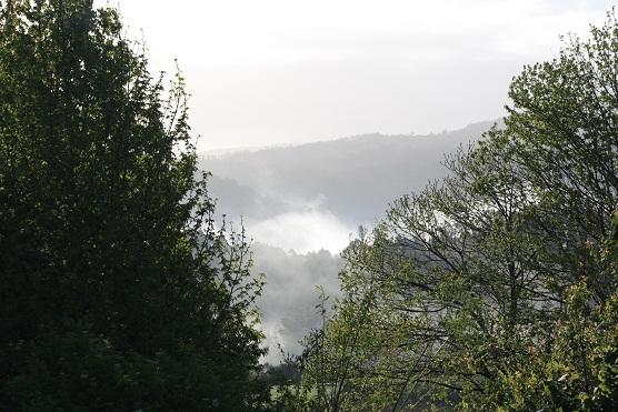 Niebla, con el sol, volando. La niebla es la esperanza hecha agua, el sueño de la tierra aún dormida.  Mónica Fernández-Aceytuno