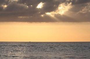 En el Día Mundial de los Océanos, mi homenaje a los marineros que llevan dentro el silencio del fondo marino.  Mónica Fernández-Aceytuno