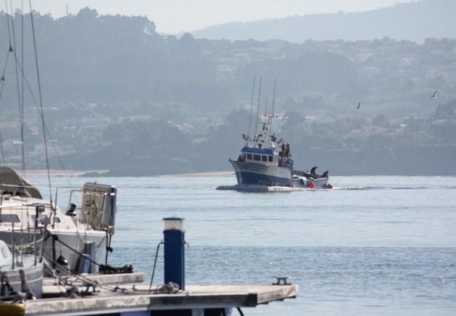 Qué manera de terminar esta noche las sardinas sus días de mar, entre brasas de laurel y de carozos de los maizales.  Mónica Fernández-Aceytuno