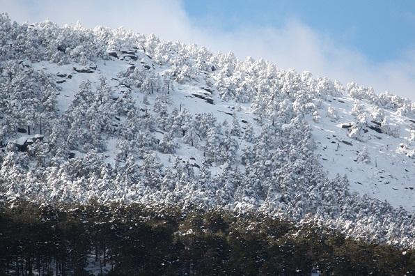 La nieve es la sombra blanca, de una nube, que ya ha pasado.