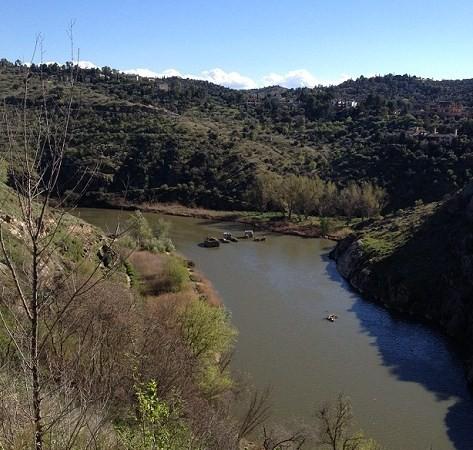 Como si hubiera sumergido en sus aguas un bosque de encinas y de cipreses, ese mismo verde de sus ramas, verde seco, el que tiene el agua del Tajo al rodear Toledo.  Mónica Fernández-Aceytuno