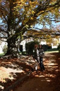 Con mi amiga Lola en La Granja el 8-11-2015, a la sombra de un haya/ Aceytuno
