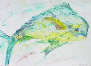 Coryphaena hippurus Painting of a Mahi Mahi fish, by I.V.Passmoore