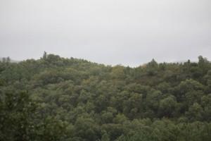 Sierra de Aracena vista desde la finca Buen Vino de Sam y  Jeannie Chesterton