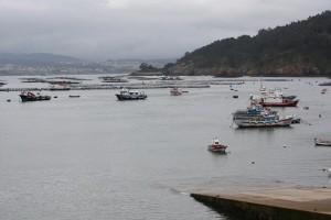 Desde el bar del puerto, donde comen lirios los bateeiros/ Aceytuno