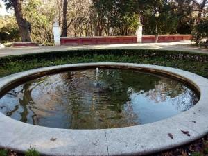 Fuente del parque de la Fuente del Berro con las hojas sumergidas como peces (10-1-2015) / Aceytuno