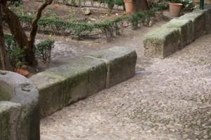 Piedras del patio / Aceytuno
