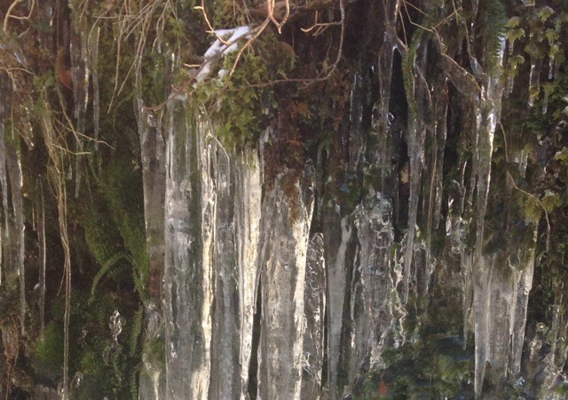 Luz y hielo, por María Luisa