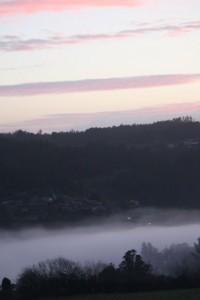 Niebla con la primera luz del día