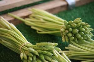 Espárragos verdes finos