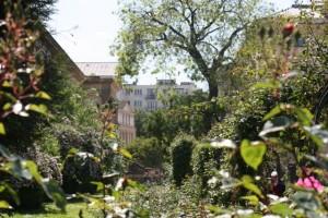 Le jardin de plants / Aceytuno