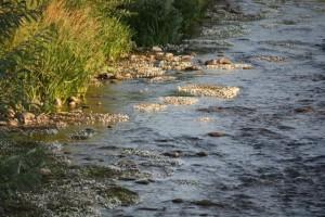 Último sol del día sobre el río/ Aceytuno