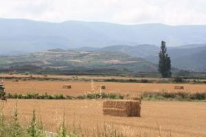 La Rioja el 22-7-2015/ Aceytuno