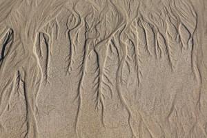 En la bajamar se nota que el agua tiene raíces / Aceytuno