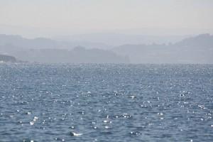 Maresía es el olor a mar / Aceytuno