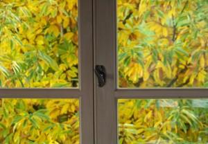 Otoño del castaño en la ventana / Aceytuno