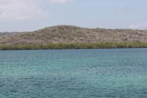 Montes de bosque tropical sobre el mar/ Aceytuno