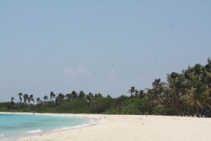 Playa exterior/ Aceytuno