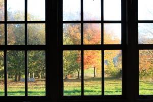 Luz de otoño / Aceytuno