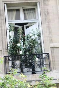 Ventana de París / Toutes mes condoléances/ Aceytuno