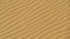 Arena en la playa de Doniños / Aceytuno