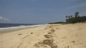 Playa africana cerca de Pointe-Noire / Aceytuno