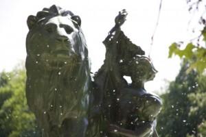 Borra algodonosa de chopo  que envuelve las semillas volando entre las esculturas del Retiro/ Aceytuno