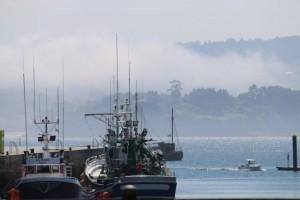 Niebla entrando por el puerto esta mañana / Aceytuno