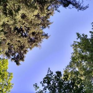 Río azul del cielo / Abril 2017/ Aceytuno